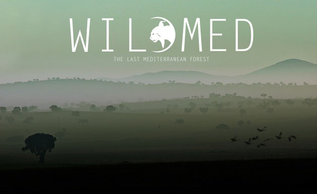 WildMed, the last mediterranean forest