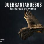 quebranta1a